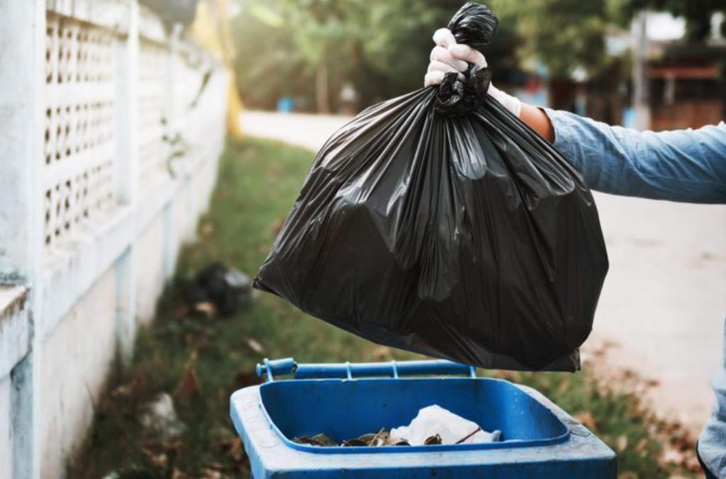 Waste Management In Palm Harbor